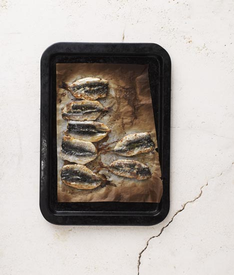 Sarah wilson why you should eat sardines and how to for Why do fish have mercury