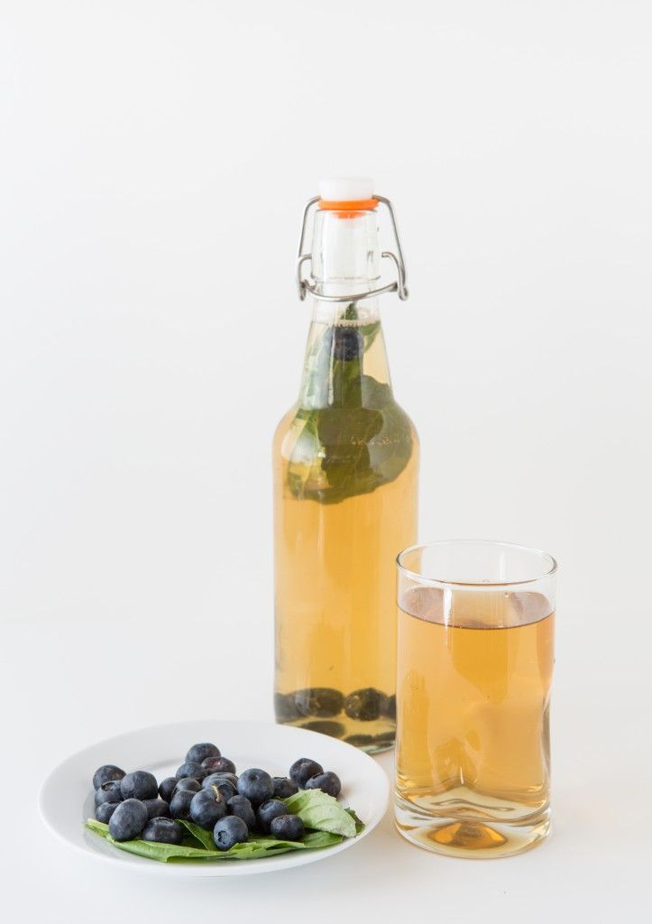 how to make kombucha blog